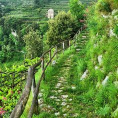 Die Amalfiküste als Wanderparadies: Idyllischer Wanderweg kurz vor Bomerano (Etappe 3)