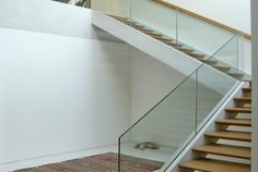 A simplicidade, o minimalismo, a unidade, a pureza das formas, a leveza dos beirais de concreto, a quebra dos limites entre interior e exterior e os espaços generosos são características singulares deste projeto. O desafio é levar grandes vãos e balanços ao limite extremo, com muito mais leveza.