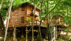 Treehouse Accommodations in the rainforest along the beach? Yes please! Aqua Wellness Resort  San Juan del Sur, #Nicaragua #iGottaTravel