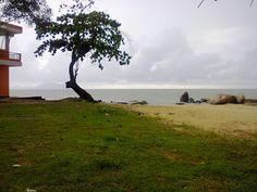 Still @Pasir Panjang Beach