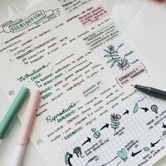 The Pink Studyblr School Organization Notes, Study Organization, Class Notes, School Notes, Pretty Notes, Good Notes, College Notes, Study Journal, School Study Tips