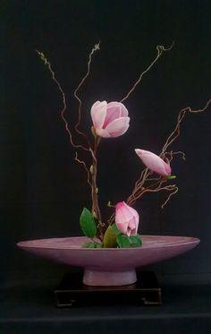 L'image contient peut-être : fleur