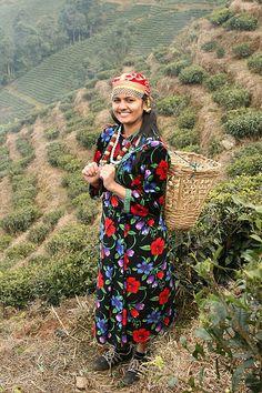 Tea leaves - Darjeeling
