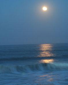Moonlight Night at Del Seashore State Park