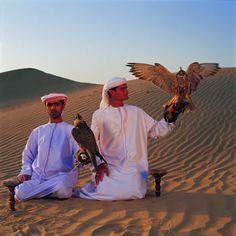 Natural Beauty of Dubai