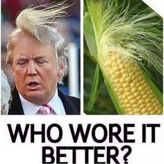 debatable....i choose the corn
