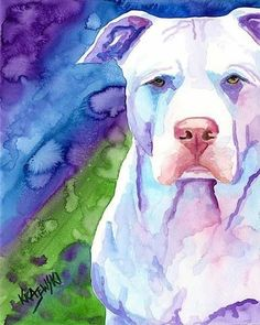 beautiful painting of a pitbull