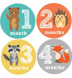 Woodland Friends Baby Month Stickers