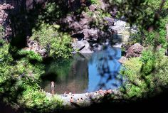 Salmon Hole, Chico, California: I'll have to find this place when I go for my cousins wedding at the end of April!!
