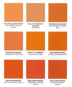 Different Shades Of Orange Paint paint color that goes with burnt orange - google search | clinic