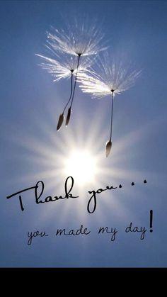 The Best Happy Birthday Memes - Mikela Memoirs Thank You For Birthday Wishes, Thank You Wishes, Thank You Messages, Happy Birthday Quotes, Happy Birthday Images, Happy Birthday Wishes, Birthday Greetings, Thank You Cards, Thank You Qoutes