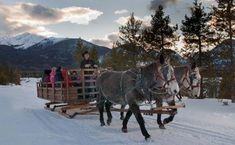 Sleigh Ride Breckenridge - Winter sleigh ride - My Goal is to do this in between Thanksgiving and Christmas -maybe this year!