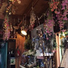 Willow Oak Flower and Herb Farm Witch Cottage, Witch House, Witch Aesthetic, Aesthetic Room Decor, Witch Room, Witch Decor, Kitchen Witch, My Room, Room Inspiration