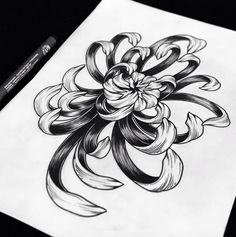 #flower #tattoo #line #black #newtraditional #rose #chrysantemums #neotraditionel neo traditionel #illustration #draw #drawing #ink #inked