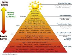The Karma Food Pyramid. So much information is thrown at us about what to eat and what not to eat, it can be confusing and sometimes overwhelming. For me, this guide stands out above the rest. Spirulina Recipes, T 62, Food Pyramid, Wheat Grass, Alkaline Foods, Raw Cacao, Healthy Aging, Food Is Fuel, Alternative Health