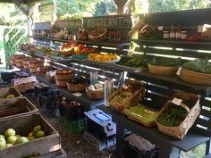 Migliorelli Farm Stand, Rhinebeck, NY