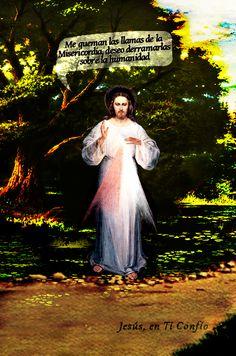 Divina Misericordia : misericordia divina
