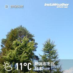 おはようございます! 青空とポカポカ陽気です~♪