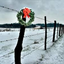 Image result for AMISH HOLIDAYS
