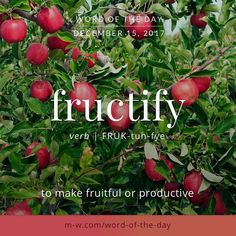 Todays is fructify . Unusual Words, Weird Words, Rare Words, Unique Words, New Words, Cool Words, Vocabulary Words, English Vocabulary, Vocabulary Building