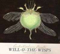 willow o the wisp - Google Search