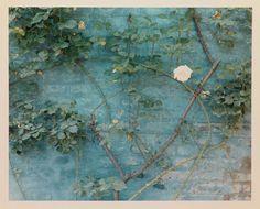A Venezia, i paesaggi di Luigi Ghirri e Yona Friedman - gallery | Abitare