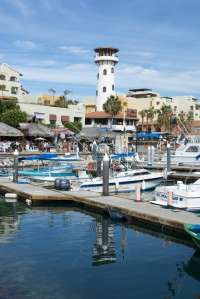 Cabo San Lucas & the Los Cabos area that includes San José del Cabo, offers a wide variety of things to do, sports, tours, activities and just plain sightseeing. For more ideas on what to do in CSL go here: http://www.cabosanlucas.net/what_to_do/index.php #csl #cabo #cabosanlucas #loscabos #baja #bcs #mexico #activities #tours #sports