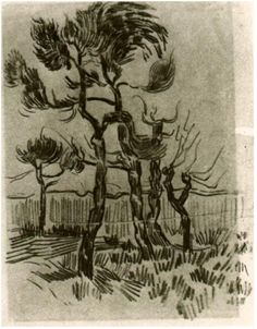Pine Trees in Front of the Wall of the Asylum by Vincent Van Gogh Drawing, Pencil Saint-Rémy: October - 5-22, 1889