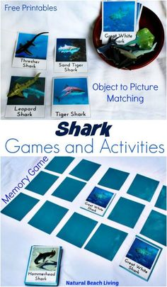 Awesome Shark Activities for Kids, Plus Shark Books, Shark crafts, Shark Party Ideas, and lots of Ocean themed Preschool and Kindergarten activities. Shark Week Printables and Crafts your kids will love Shark Activities, Shark Games, Printable Activities For Kids, Summer Activities For Kids, Preschool Activities, Free Printables, Preschool Writing, Alphabet Activities, Shark Week Crafts