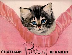 vintage kitty cat in pink blanket 1952 advertisement.