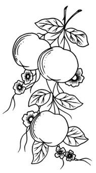 Colouring Pages, Adult Coloring Pages, Coloring Books, Ribbon Embroidery, Embroidery Stitches, Embroidery Patterns, Stencil Painting, Fabric Painting, Wood Burning Art