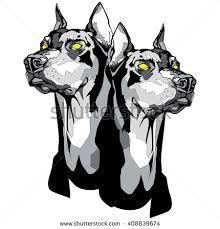 Vector black and white illustration of a two Doberman Pinscher heads in tattoo style. Dobermann Tattoo, Dog Signs, Black And White Illustration, Doberman Pinscher, Outline, Lion Sculpture, Batman, Statue, Superhero