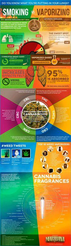 Vaporizar o fumar marihuana, descubre la diferencia (Infografía)