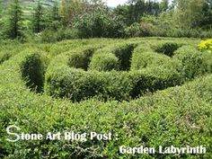 One day if I have a huge piece of land, I'd like to incorporate a Labyrinth, but I'd like it to be edible so probably berry bushes!