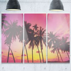 Row of Beautiful Palms under Magenta Sky - Extra Glossy Metal Wall Art - 36Wx28H Landscape