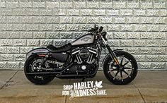 Only the best for the baddest. | Harley-Davidson Iron 883 in Charcoal Denim