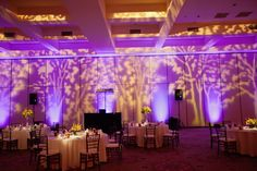 Wedding Reception At The Founders Inn And Spa Blue Steel Lighting Design