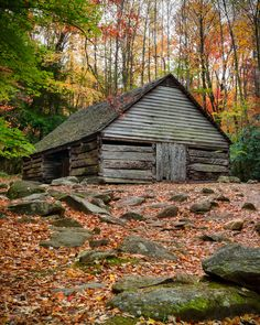 Abandoned mountainside cabin the great smoky mountains for Motor trails in gatlinburg tn