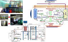 Company Profile - Think Green Tenang Jaya 06
