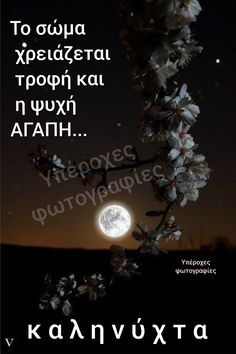 Beautiful Pink Roses, Good Night Sweet Dreams, Good Morning, Wish, Love, Greek, Pictures, Greek Quotes, Buen Dia