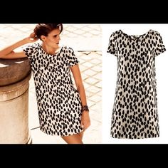 """On Sale ❤H&M Dalmatian Print Dress Bought it off another posher, but it was wrong size. Length is 32.5"""". Short sleeves. Its a really cute dress, too bad it doesnt fit me. H&M Dresses Mini"""
