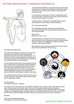 Triple-warmer-meridian-flow - pdf download free - ww.natural-health-zone.com