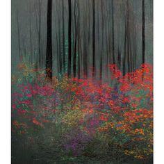 Страшно интерестные работы от Bogdan Prystrom, особенно как выглядят... ❤ liked on Polyvore featuring backgrounds, textures, flowers, art and trees
