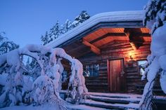 Rustic deadwood pinelog cabin at Kakslauttanen resort near Saariselkä, Finland.