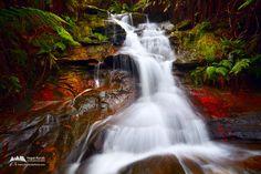 Leura Waterfalls, Blue Mountains National Park, NSW, Australia by © Yegor Korzh via yktravelphoto.com
