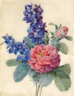inspiration for larkspur part of the tattoo                                                                                                                                                                                 More