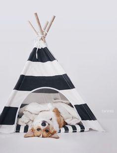 Dog teepee #pipolli   www.pipolli.com