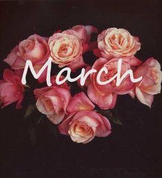 Bem Vindo Março | Bring us Spring