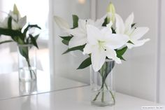 White Lilies - Adalmina's Secret Flower Centerpieces, Flower Vases, Flower Art, Flower Arrangements, Love Flowers, White Flowers, Beautiful Flowers, Wedding Flowers, Love Lily