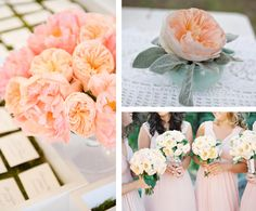 Garden Roses with One Fine Day Events